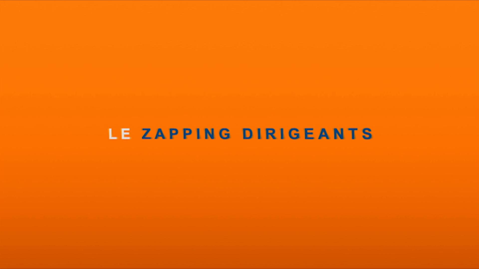 Zapping Dirigeants  Novembre 2014