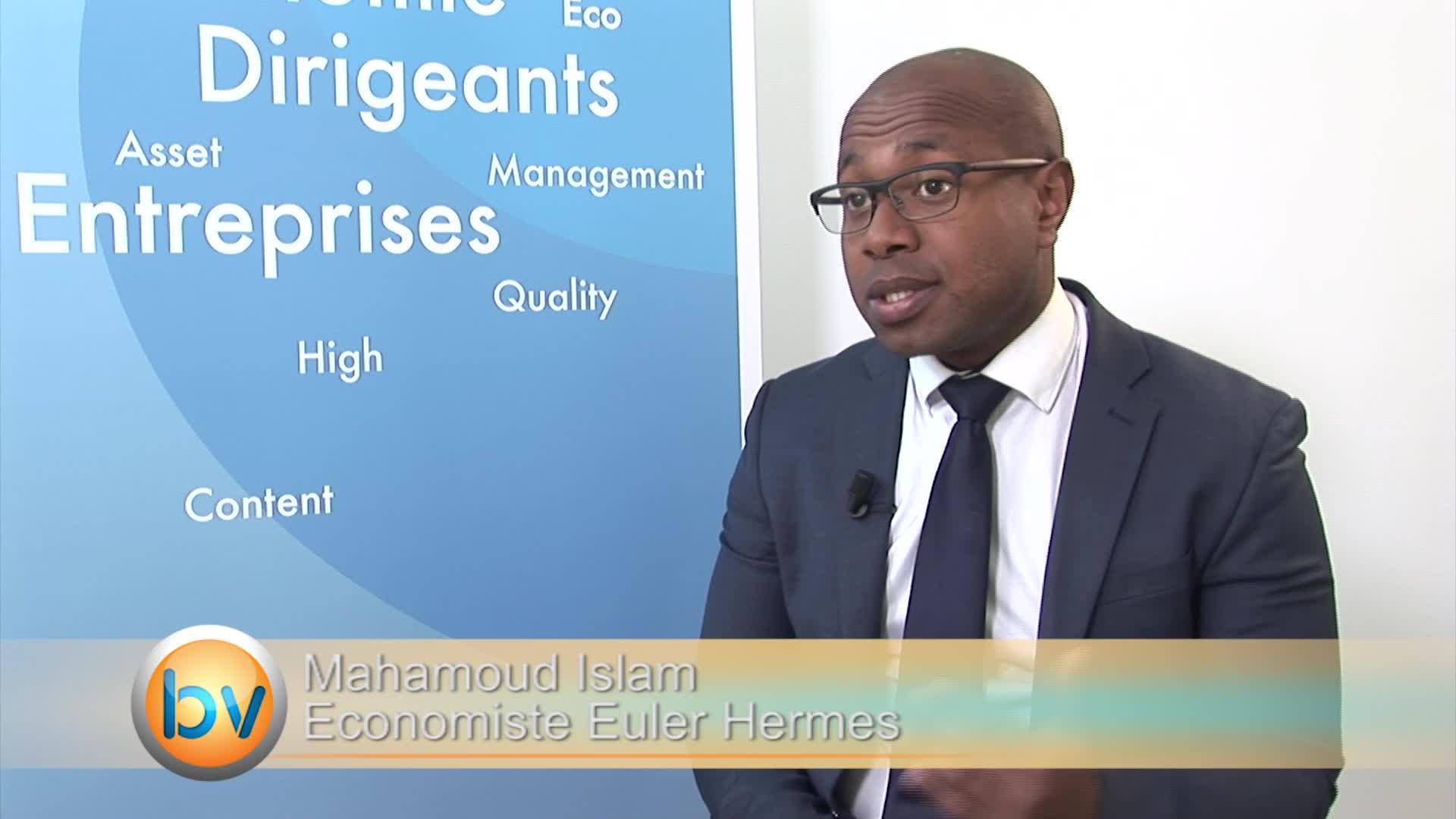 """Mahamoud Islam Economiste Euler Hermes : """"Il y a une stratégie de long terme en Inde pour les entreprises françaises"""""""