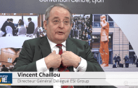 """Vincent Chaillou Directeur Général Délégué ESI Group : """"La sécurité financière d'ESI est assurée"""""""